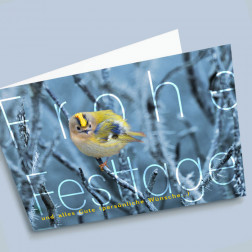 Weihnachtskarte Goldhähnchen A6 gefaltet